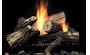 Propane Gas Ventless Burners