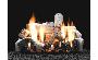 Natural Gas Vented Burners