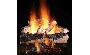 Propane Gas Ventless Log & Burner Sets