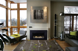 Loft Small Direct-Vent Fireplace Insert DVL25IN33N - Natural Gas