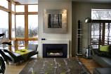 Loft Small Direct-Vent Fireplace Insert DVL25IN73P - Liquid Propane