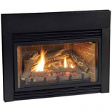Direct Vent Fireplace Insert DV25IN73LN - Natural Gas