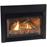 Direct Vent Fireplace Insert DV25IN73LP - Liquid Propane