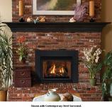 Direct Vent Fireplace Insert DV33IN33LP - Liquid Propane