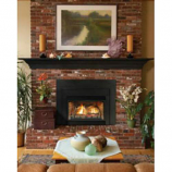 Direct Vent Fireplace Insert DV33IN73LN - Natural Gas