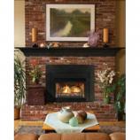 Direct Vent Fireplace Insert DV33IN73LP - Liquid Propane