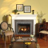 Tahoe Premium 42 DV Fireplace with Door Set and Frame, LP