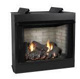 Deluxe 32 VF FF SS Firebox, PNDRS Logset & IP Slope Glaze Burner - LP