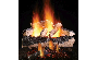 Propane Gas Ventless Log & Burner Sets