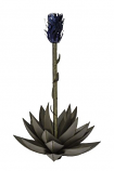 Blue Agave with Torch - Small By Desert Steel