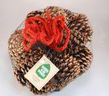Goods Of The Woods 10287 Cinnamon Scented Cones in Bag