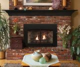 Empire Innsbrook Small Direct-Vent Clean Face MV Fireplace Insert - LP
