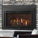 Majestic MDVI30IL Direct Vent Gas Fireplace Insert Package19 - LP