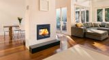 Duet See-Through Wood Burning Fireplace with 2 Ducts - Metallic Black
