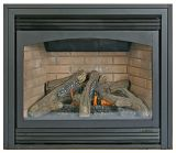 Buck Stove FP-DV1000O-XL-LP Ember Vision DV and ZC Gas Fireplace - LP